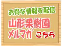 さくらんぼ 山形果樹園メールマガジン